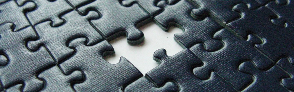 cropped-puzzle